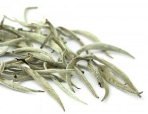 Silver Tip Weißer Tee