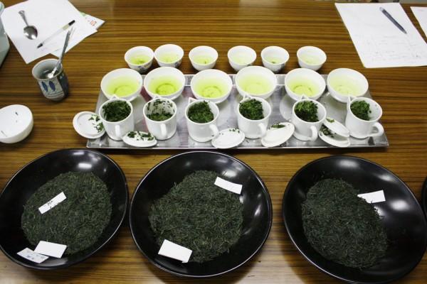 Sencha- und Gyokuro-Verkostung