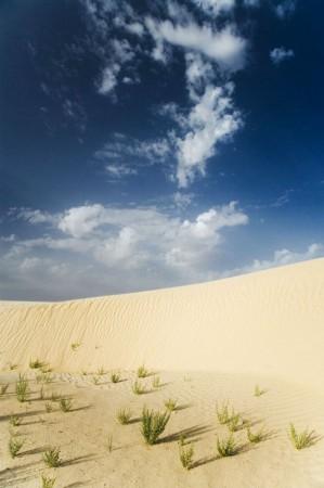 Sand in der Wüste