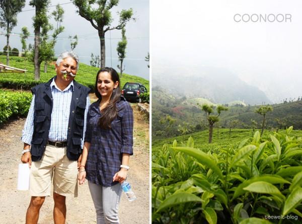 Coonoor tea estate