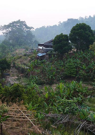 Dorf in Jingmai