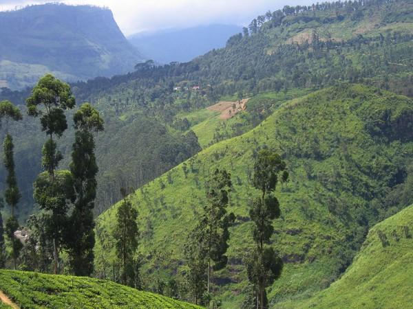 Hochland Sri Lankas