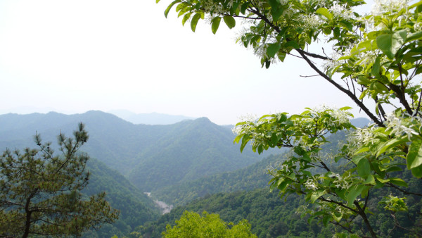 Xihu-Westlake