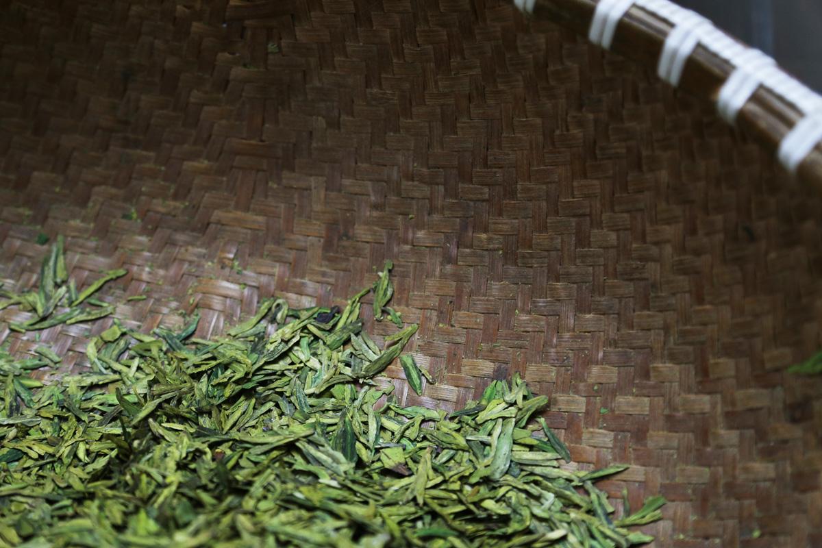 Der Tee-Blog