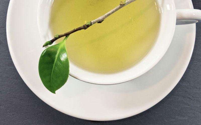Grünen Tee richtig zubereiten
